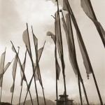 sikkim-flags-1